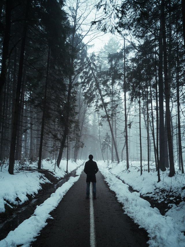 Person in a black jacket standing on an asphalt path flanked by snow-covered trees