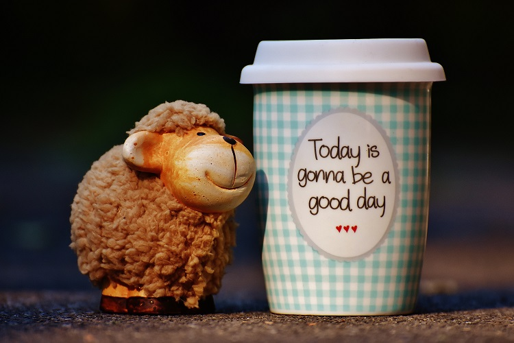 "A small, smile lamb stuffed animal next to a coffee cup that says ""Today is gonna be a good day."""